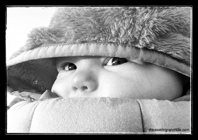 hbw baby eyes